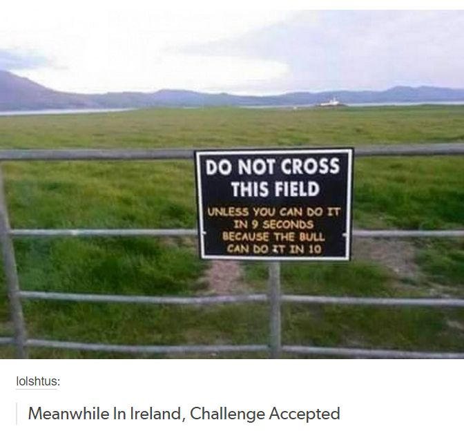 Meanwhile, in Ireland...