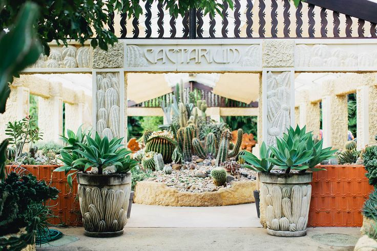 Villa Botanica's own Cacterium. Stunning location for bridal photos. Think Palm Springs!