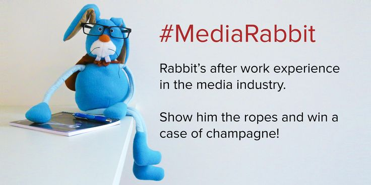 Thinkbox, the marketing body for UK commercial TV, has sent Rabbit – from its long-running Harvey   and Rabbit adverts – out on work experience. Since Harvey the dog was all loved up with fellow   canine Harmony in the last of the iconic TV ads, Rabbit has needed to 'broaden his horizons' so is learning all about the media industry via work placements with media and advertising agencies.