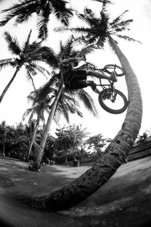 One Life - Palma ride
