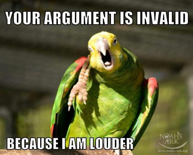 If You Have A Companion Bird, You Will Love These Memes!: Heads up! This Guy Is Speaking!