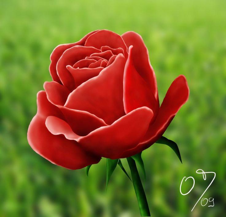 růže - Hledat Googlem