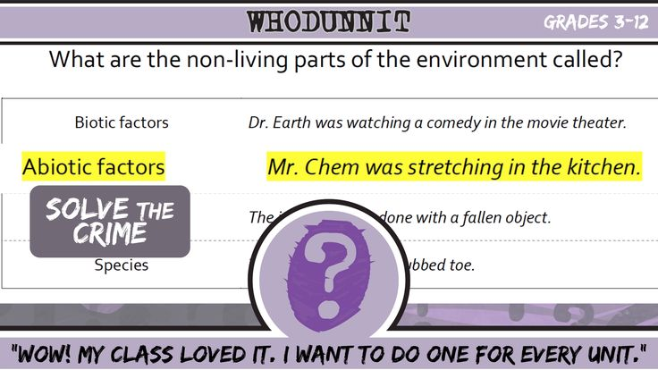 Whodunnit Science Video Science Questions Science Science Videos