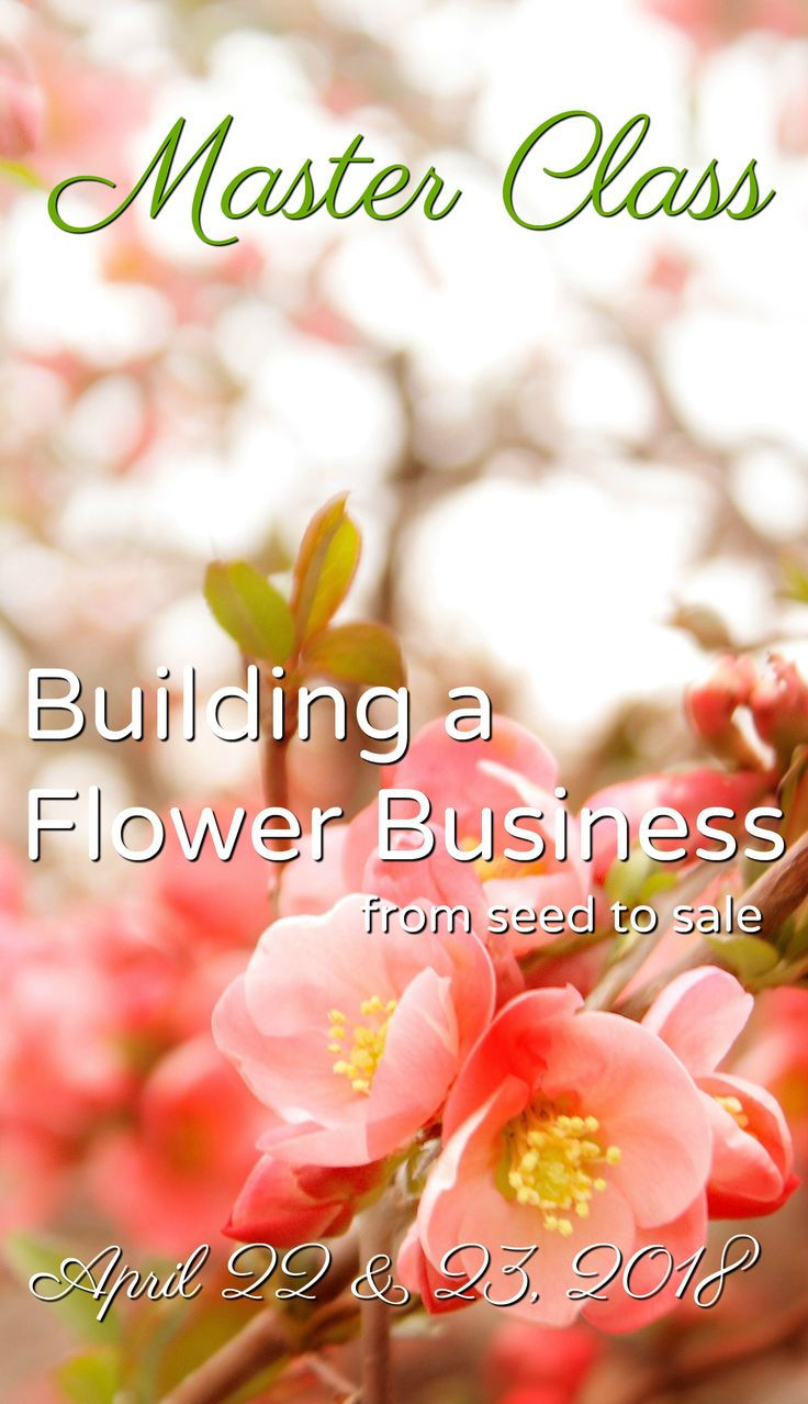 Building at Flower Business: From Seed to Sale.  A Master Class experience for Floral Professional hosted by Love 'n Fresh Flowers in Philadelphia.  Click to learn more and sign up today!   #flowerfarm #farmerflorist #flowerworkshop #floraldesign