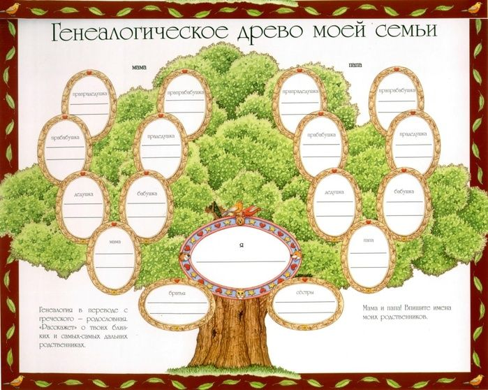 родословное дерево семьи шаблон в формате ворд