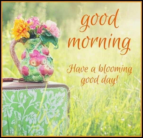 Good morning.                                                       …