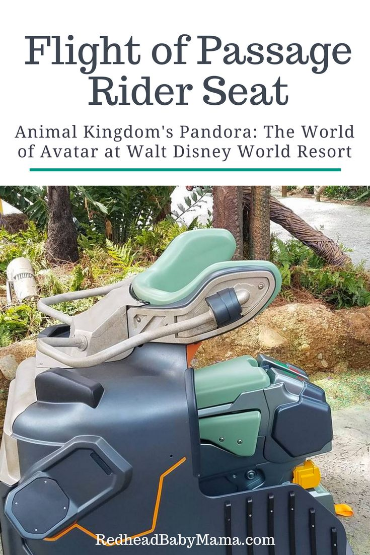If you are visiting Disney's Animal Kingdom, you'll want to know all about the Flight of Passage Rider Seat and how it works.
