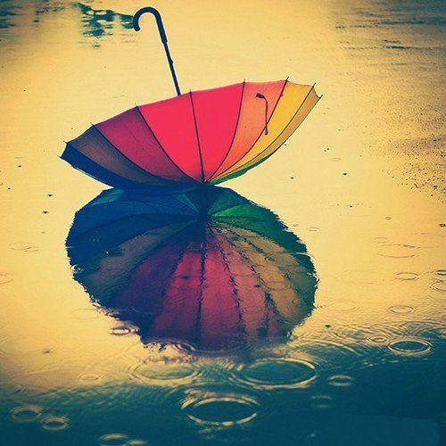 Rainbow Umbrella and Reflection in the Rain.