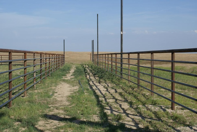 1000 Images About Horse Fencing And Gates On Pinterest