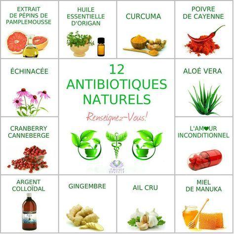 12 Antibiotiques Naturels: l'Extrait de Pépins de Pamplemousse (EPP), l'Huile Essentielle d'Origan, le Curcuma, le Poivre de Cayenne, l'Aloé Véra, le Miel de.... | 12 ANTIBIOTIQUES NATURELS Le Monde s'Eveille Grâce à Nous Tous ♥