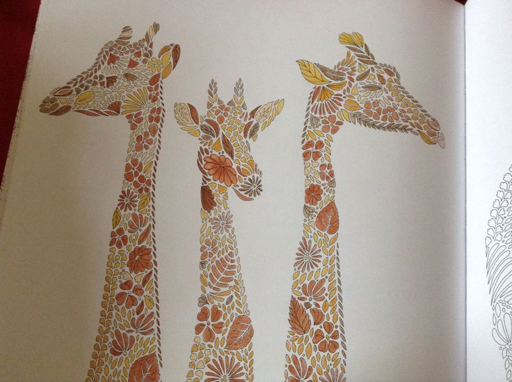 119 Best Animal Kingdom Coloring Book Images On Pinterest