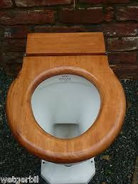 Image result for victorian toilet seat