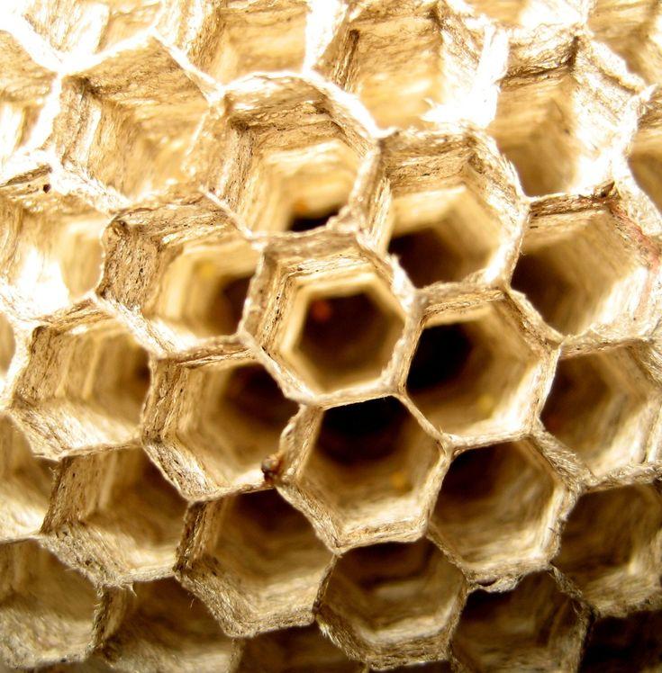 La arquitectura y el hexágono cerámico