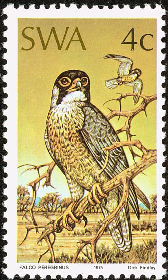 Peregrine Falcon stamps - mainly images - gallery format