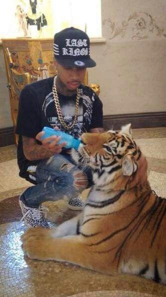 O lookie Tyga got a tiger.