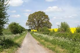 Image result for english landscape