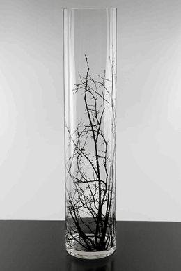 Tall Vases Birch Tree Branch Silhouette 5x24 Quot Glass Cylinder Vases For The Home Pinterest