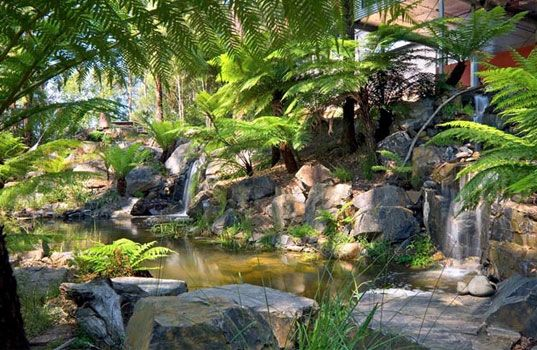 Phillip Johnson, Phillip Johnson Sustainable Landscape Systems, billabongs, natural swimming pools, green swimming pools, chlorine free swim...
