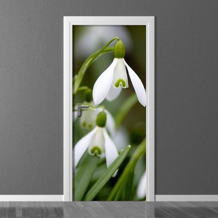 Fototapeta na drzwi - Przebiśnieg | Photograph wallpaper for doors - Snowdrop | 180PLN #drzwi #dekoracja #przebiśnieg #kwiaty #dom #mieszkanie #design #door_wallpaper #wallpaper #door_decor #home_decor #interior_decor #snowdrop #pattern #flowers