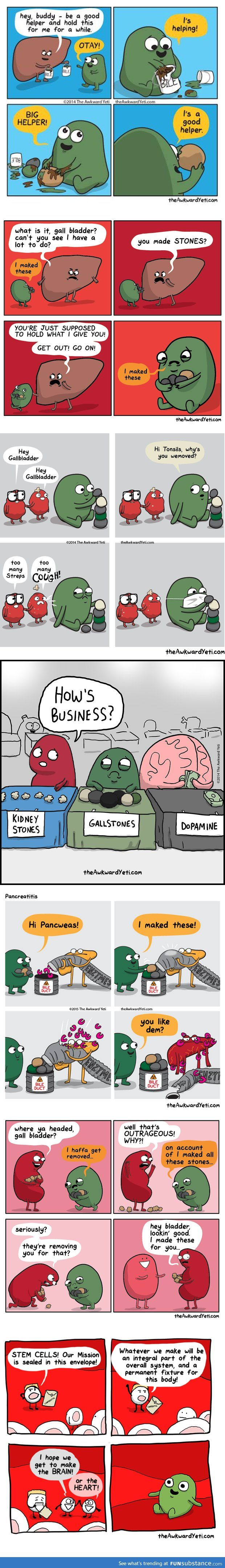 The Story of Gallbladder---why is this what I find hilarious??