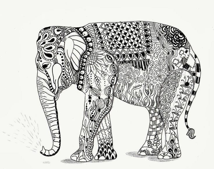 315 Best Images About Adult Colouring~Elephants~Zentangles