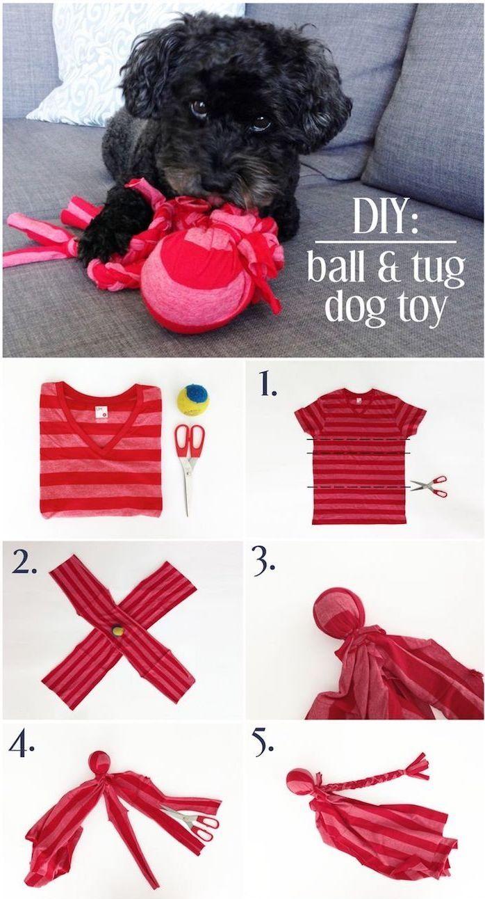 ▷ 1001 + Ideen, wie Sie ein Hundespielzeug selber machen – Bälle