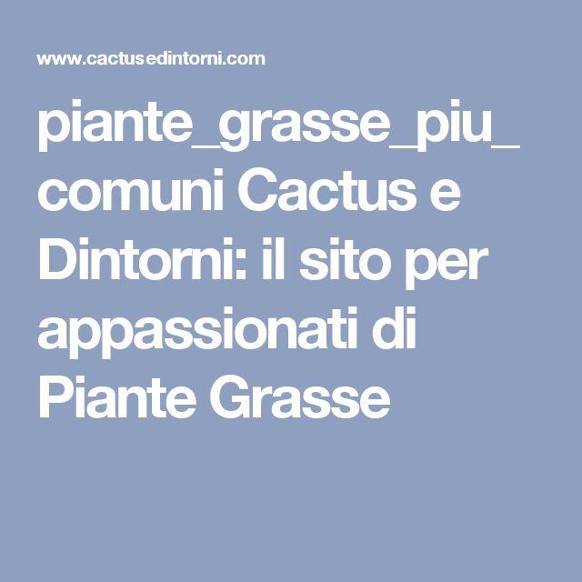 piante_grasse_piu_comuni Cactus e Dintorni: il sito per appassionati di Piante Grasse