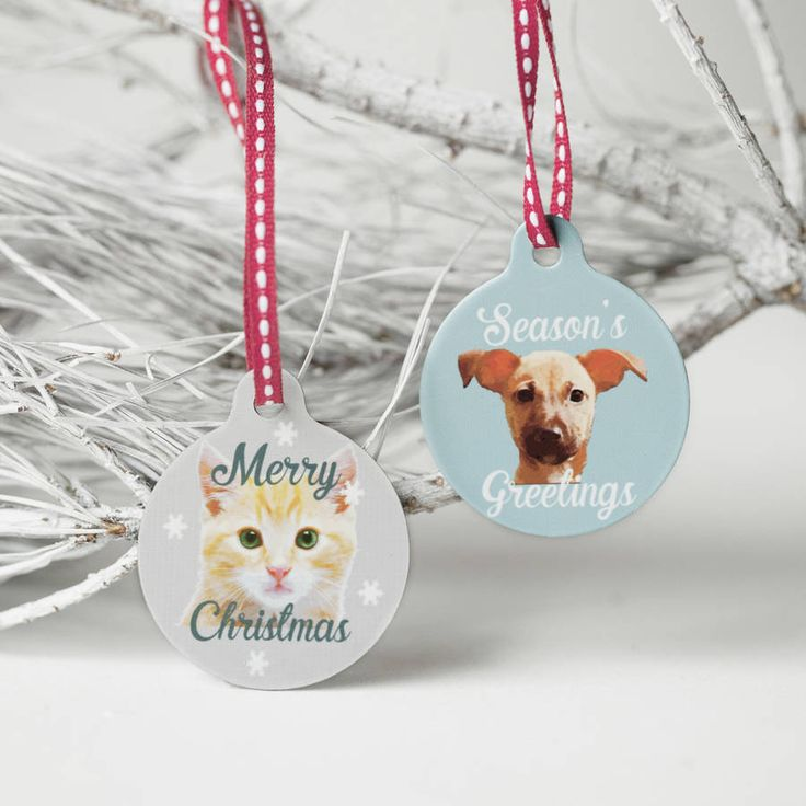 A snowy portrait of your pet created by us at Seahorse and printed on a cute metal bauble trimmed with a festive ribbon.Available with your own pet portrait done especially for you on a choice of snowy backgrounds from soft blue to pink. You can also choose to add text - a short festive message or a name for example.A brilliant gift or secret santa or even a stocking filler for a pet lover. Send us a photo and here in the Seahorse workshop we will create a little bespoke portrait of your…