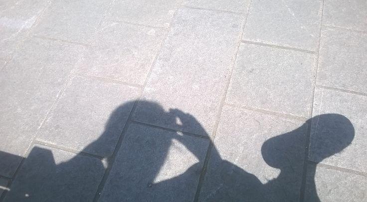 Laokoon in the shadow
