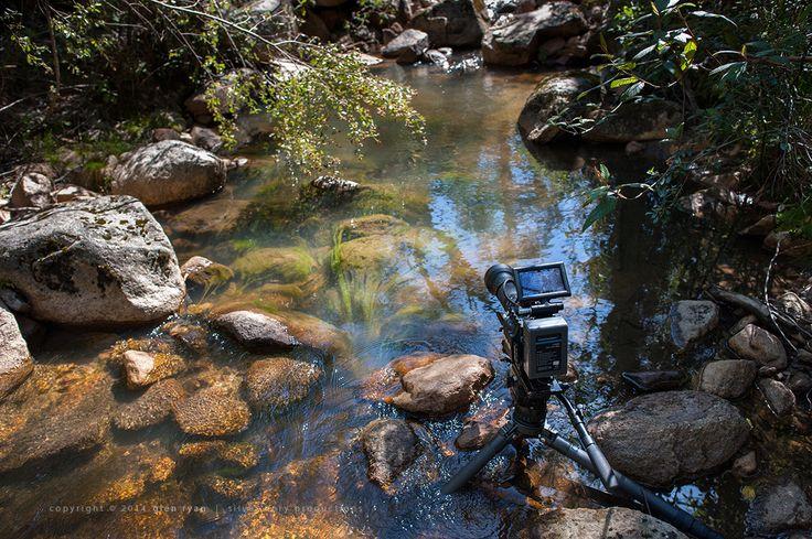 Gibraltar Creek - Woods Reserve ... IR rig cooling off a little ...