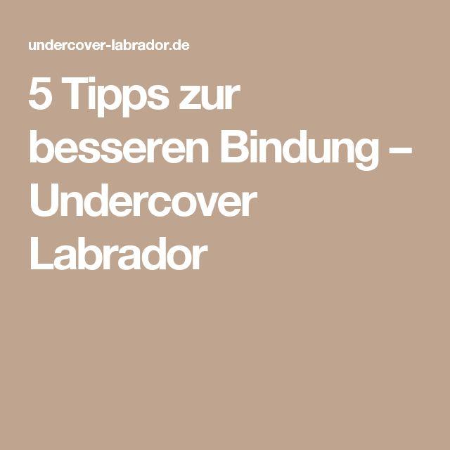 5 Tipps zur besseren Bindung – Undercover Labrador