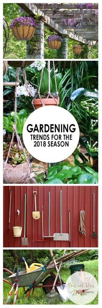 Gardening Trends for the 2018 Season| Gardening Trends, Gardening, Gardening Ideas, Gardening 101, Gardening Tips and Tricks, Garden Planning, Gardening Hacks #Gardening #GardeningIdeas