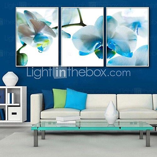 E-HOME® Framed Canvas Art, Blue Flowers Framed Canvas Print Set of 3 2016 - $169.57