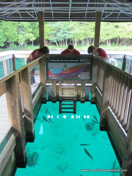 Michigan – Palms Book State Park a.k.a. Kitch-iti-Kipi. Michigan's largest spring. The color is incredible--a must-see! From Travel50StatesWithKids.com #familytravel