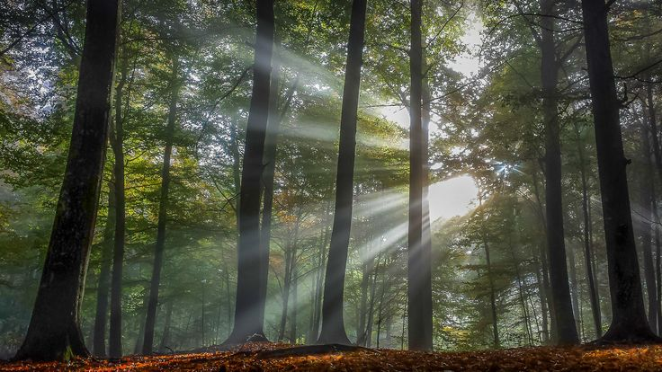 Light of angels by Tor-Arne Paulsen on 500px
