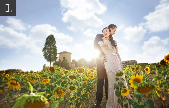 Shine in my heart #prewedding at #europe #sunflowers