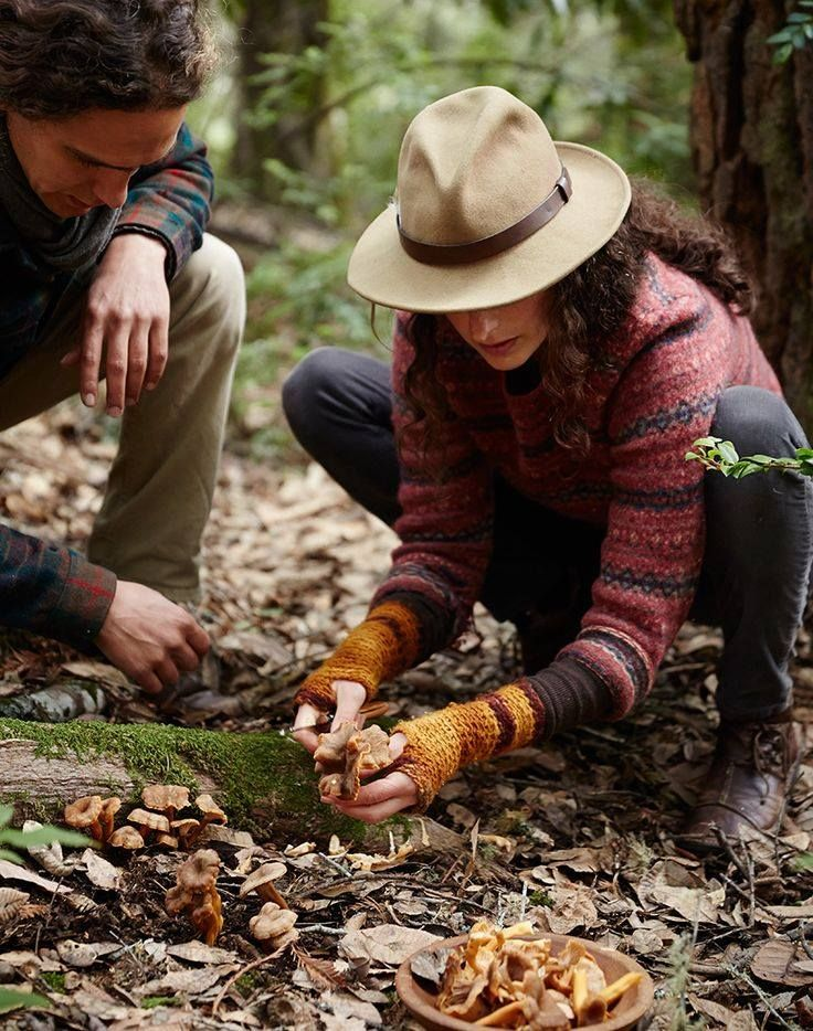 Discover the mountain paradise of Zagorochoria through a special mushroom and truffle hunting your hotel organizes for you! http://www.tresorhotels.com/en/hotels/70/zagori-suites#content