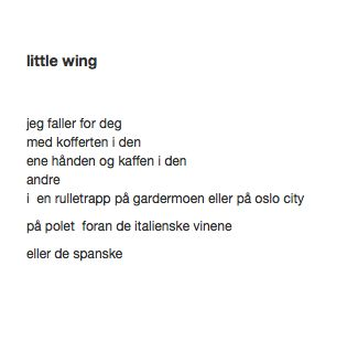 little wing Månedens TrafoTalent September 2012 #trafo #talentofthemonth #young #artists #norway
