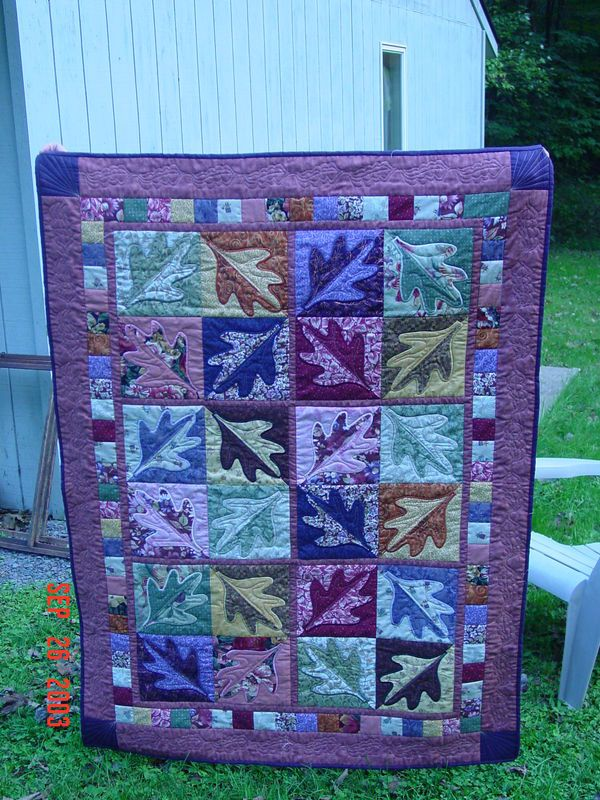 I'd like this better if it was done in fall colors, but it's still really cool!: Quilt Inspiration, Fall Colors, Color Combos, Scrappy Quilt