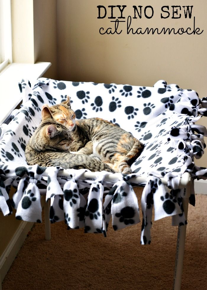 10 best images about diy cat projects on pinterest cats for Diy cat tree pvc pipe