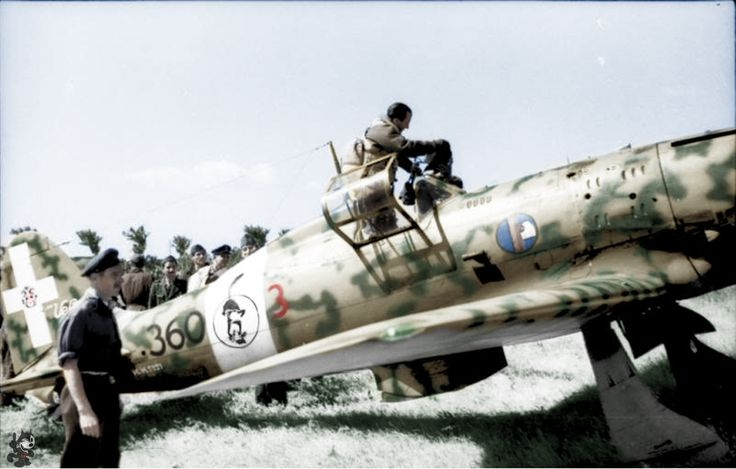 "Southern Italy - fighter Pilot Eugenio Salvi enters his cockpit of his Macchi MC.202 ""Folgore"""