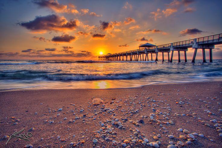 juno-beach-pier-sunrise-jellyfish-on-beach-with-shells.jpg (1200×799)