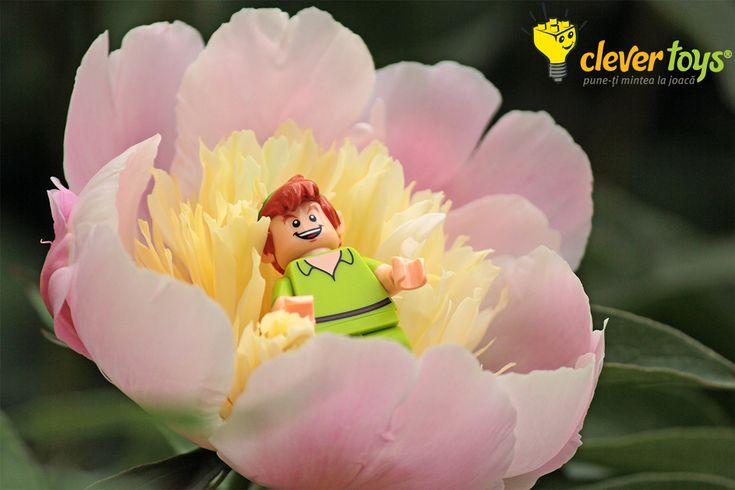 Peter Pan - LEGO Disney Minifigure