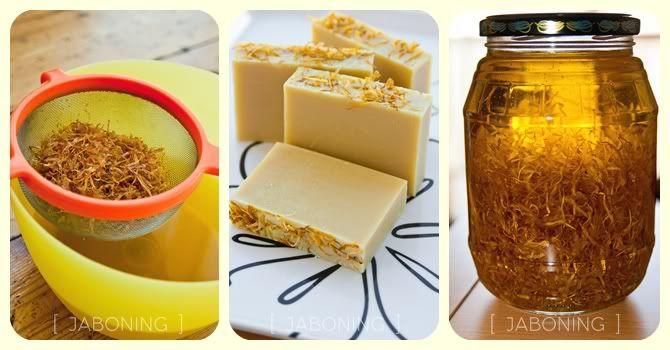 Oleatos o macerados: la base ideal para el jabón natural y para cocinar! - Jaboning te enseña