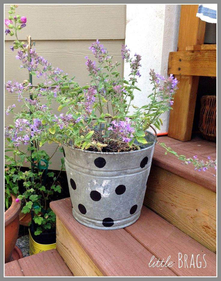 Little Brags: Paint Your Old Buckets
