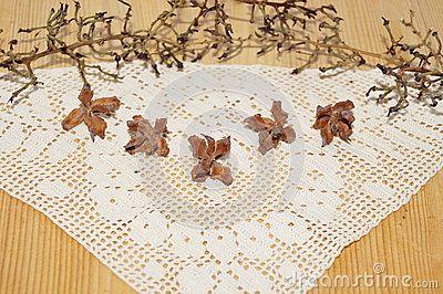 Cones enupar, branch and napkin
