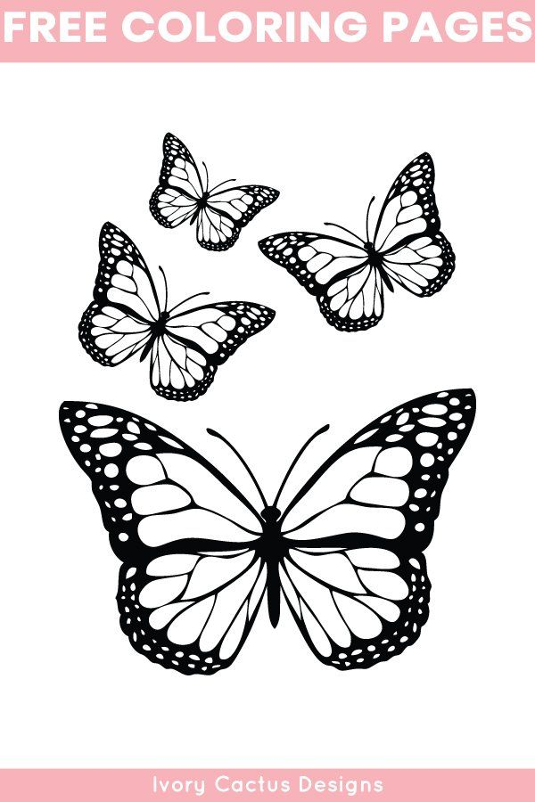 Free Printable Butterfly Coloring Pages For Adults Coloringpages Freeprintable Butterfly Butterfly Coloring Page Butterfly Tattoo Designs Butterfly Stencil