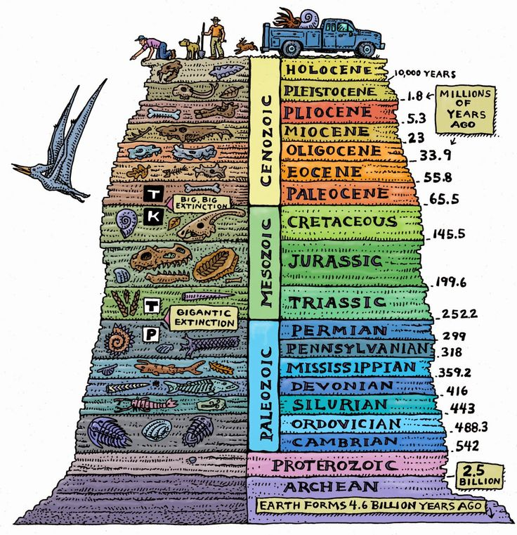 Epoch-defining study pinpoints when humans came to dominate planet Earth | Geology IN