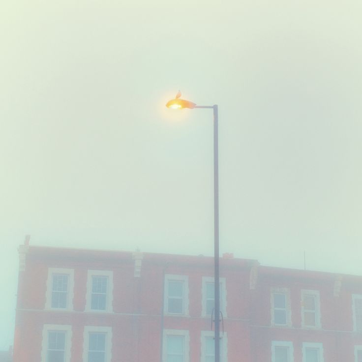 Photography | Alexandre Arnaoudov | The Lamp Post