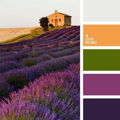 color blanco sucio, color campo de lavanda, color lavanda, color marrón amarillento, colores estilo provenzal, colores provenzales, combinación de colores para decorar interiores, selección de colores para el diseño de interiores, tonos violetas, verde y violeta.